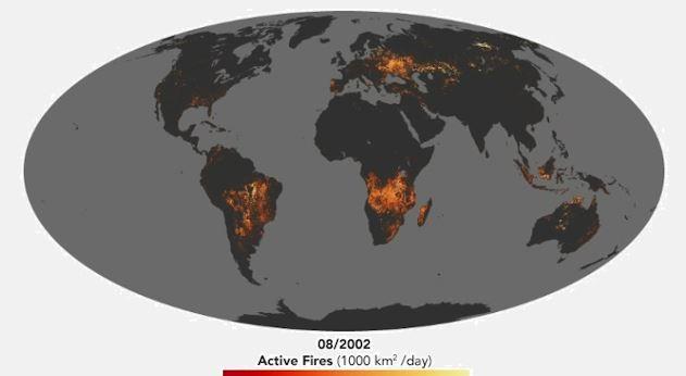 mapa_de_la_nasa_muestra_los_incendios_forestales_que_acaban_con_la_biodiversidad_del_planeta_2