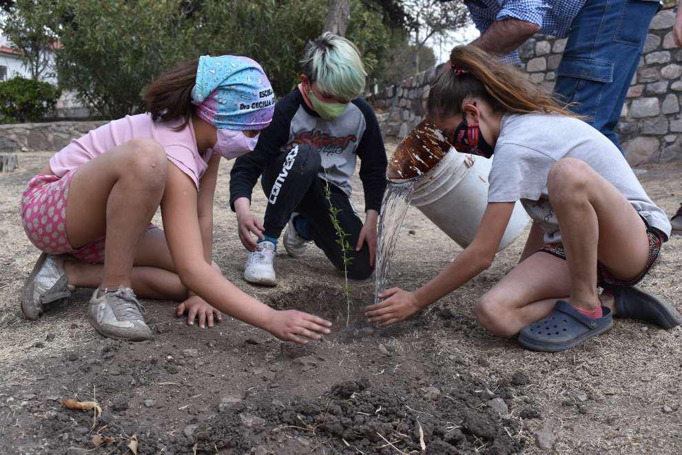 Forestando Córdoba