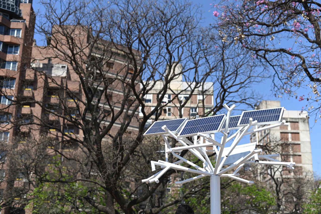 árbol solar 1